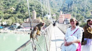 bridge-rishikesh
