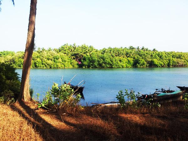 River in Agonda