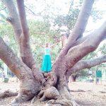 Sabrina DiAngelo auf einem Baum